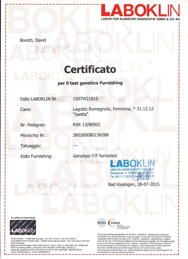 certificato test genetici furnishing lagotto romagnolo
