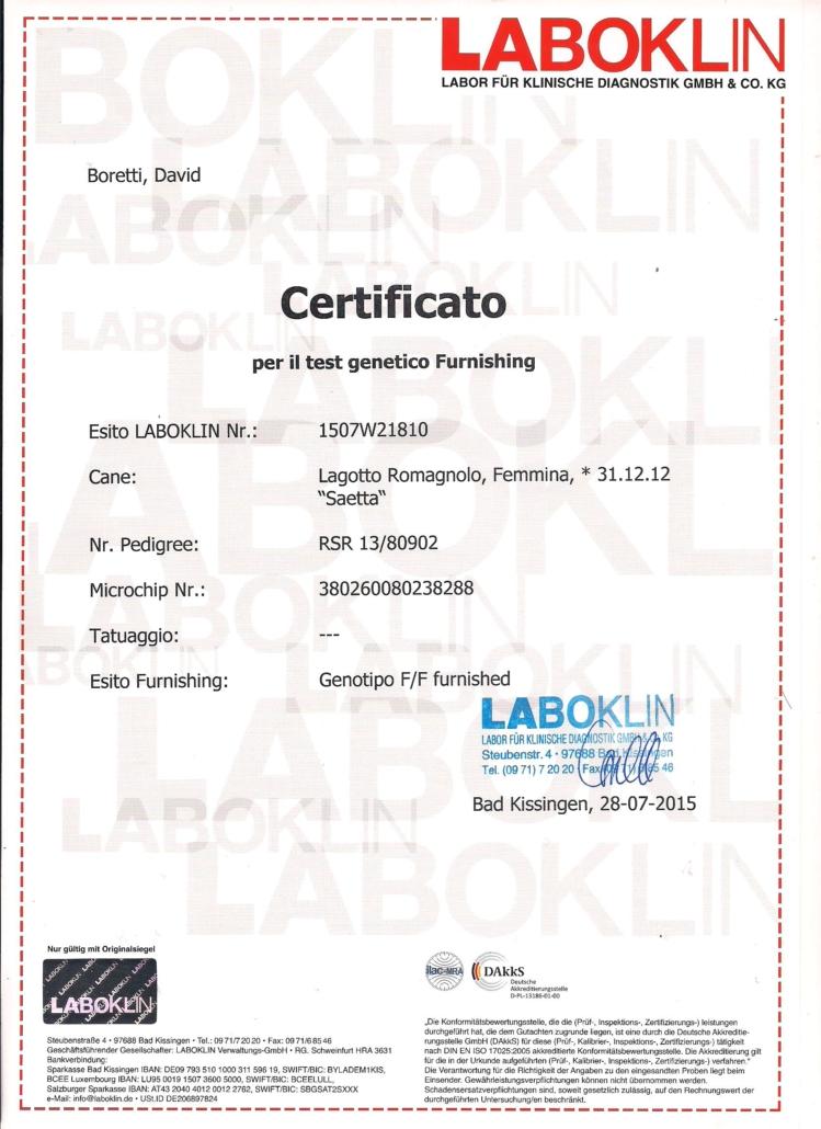 certificato test genetici furnishing lagotto romagnolo