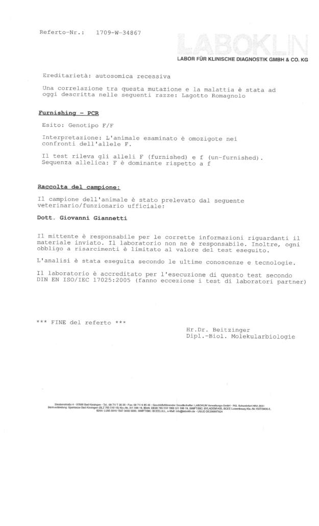 test genetici lagotto romagnolo patologie ereditarie malattie
